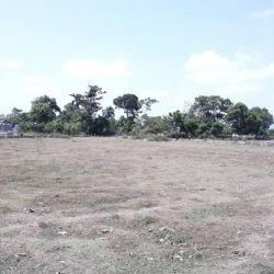 Terrain Baudin a Vendre, Cap Haïtien, Haiti